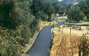 coyote_creek_jpg