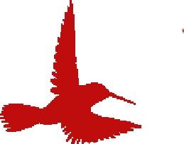 bird icon 2